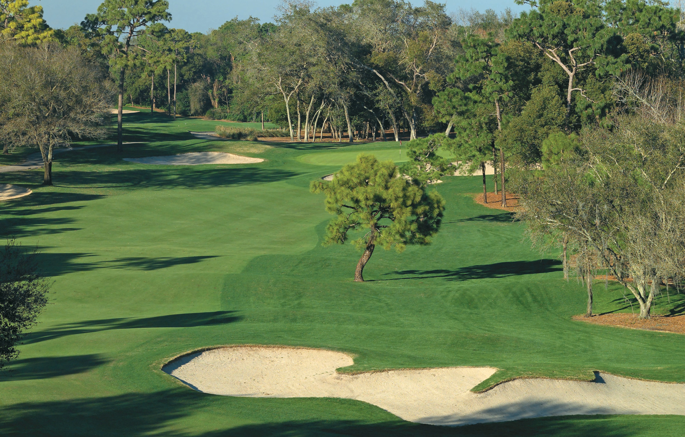 Special Offers:      Innisbrook, A Salamander® Golf & Spa Resort  in Tampa Bay