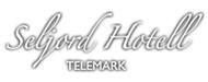 Seljord Hotell in Seljord