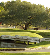 Local Attractions:      Tubac Golf Resort and Spa  in Tubac