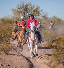 Activities:      White Stallion Ranch  in Tucson