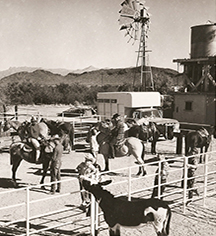 Ghost Stories:      White Stallion Ranch  in Tucson