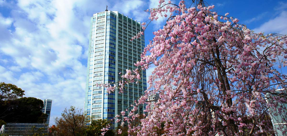 Special Offers:      The Prince Park Tower Tokyo  in Tokyo
