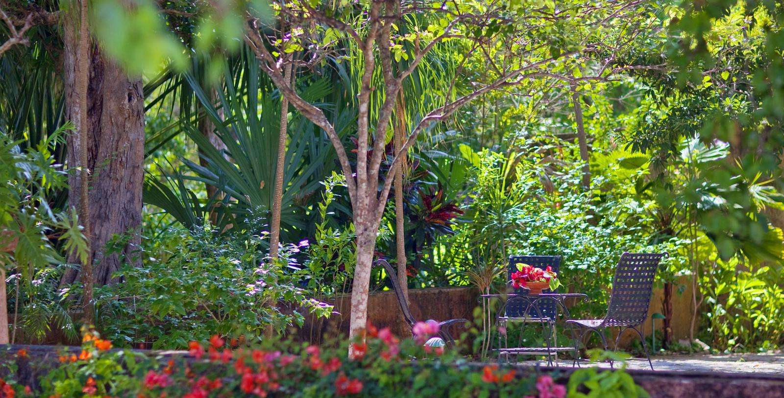 Image of the garden at the Hacienda Santa Rosa, a Luxury Collection Hotel in Yucatan, Mexico