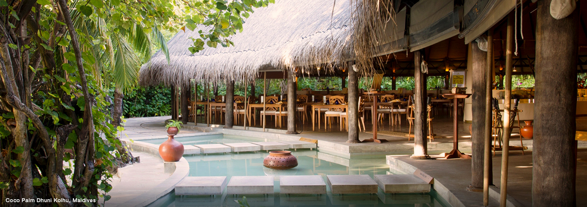 Learn More About Bed and Breakfast in the Maldives